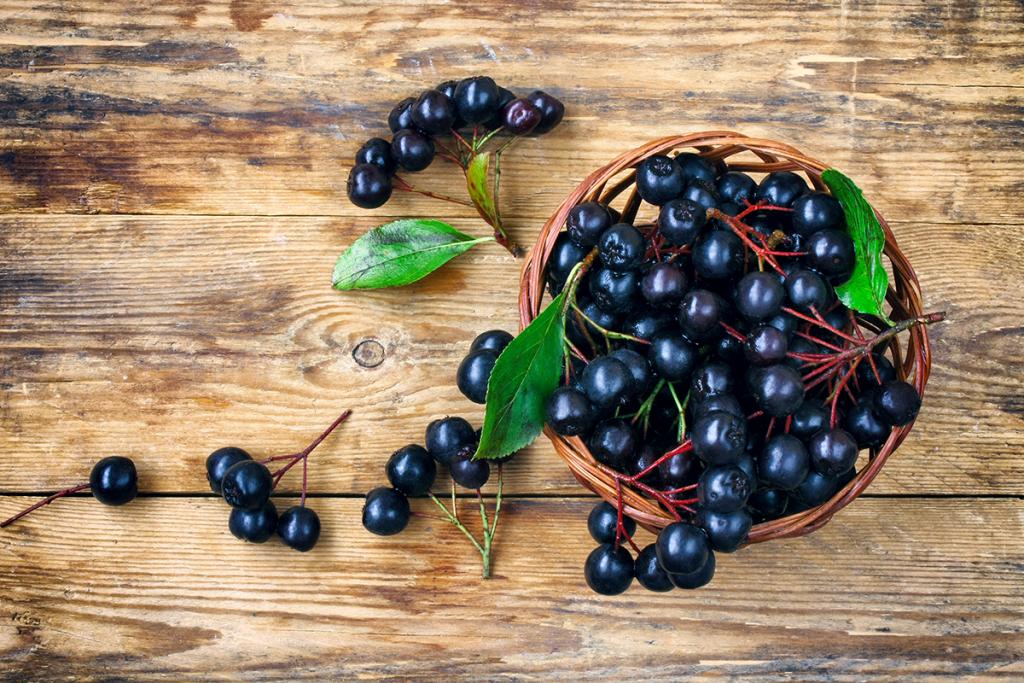 Aronia berries used in Clarity Prebiotic Blend