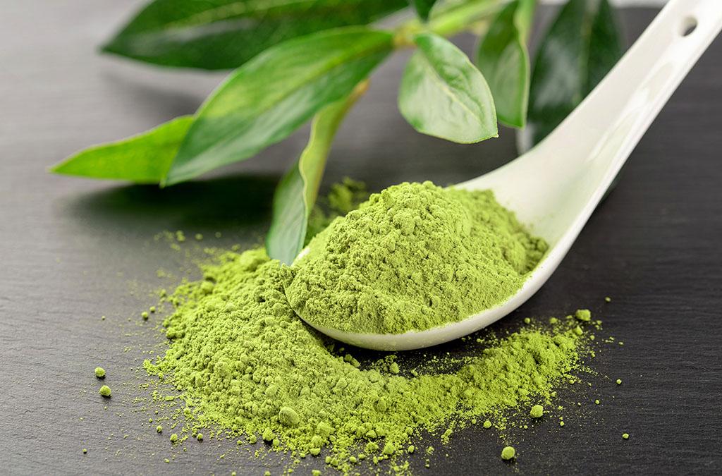 Green Tea used in Clarity Prebiotic